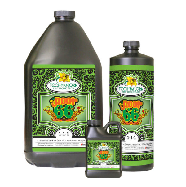 Product Family of Sizes for Root 66